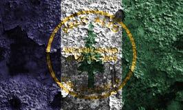 Flagga för Palo Alto stadsrök, Kalifornien stat, Förenta staterna av f.m. arkivbilder
