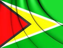 flagga guyana stock illustrationer