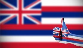 flagga hawaii Royaltyfri Foto