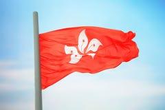 flagga Hong Kong Arkivbild