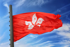 flagga Hong Kong Royaltyfri Bild