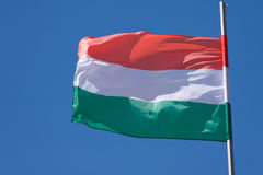 flagga hungary Royaltyfria Foton