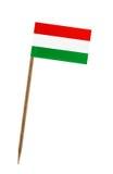 flagga hungary Royaltyfri Foto