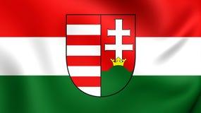flagga hungary royaltyfri illustrationer