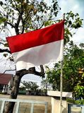 flagga indonesia Royaltyfri Foto