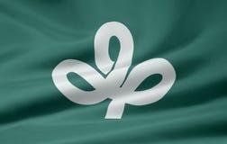 flagga japan miyagi Arkivbilder