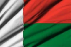 flagga madagascar Royaltyfria Bilder