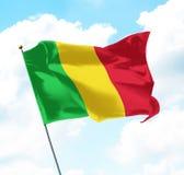 flagga mali Royaltyfri Fotografi