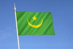 flagga mauritania Royaltyfria Bilder