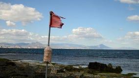 Flagga på stranden stock video
