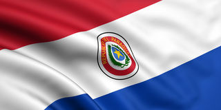 flagga paraguay stock illustrationer