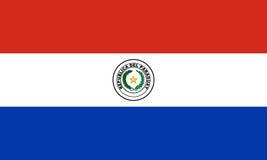 flagga paraguay royaltyfri illustrationer