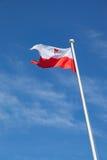 flagga poland Royaltyfri Foto