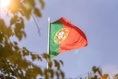 flagga portugal Royaltyfria Foton
