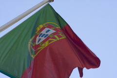 flagga portugal Royaltyfria Bilder