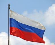 flagga russia Royaltyfri Fotografi