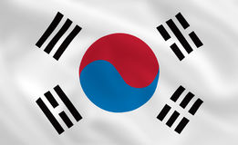 flagga södra korea Royaltyfri Bild