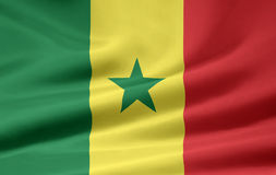 flagga senegal Royaltyfri Fotografi