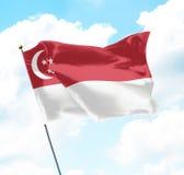 flagga singapore Royaltyfri Fotografi