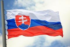 flagga slovakia Royaltyfria Bilder