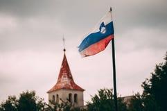 flagga slovenia arkivfoton