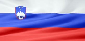 flagga slovenia Royaltyfri Fotografi