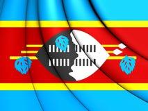 flagga swaziland stock illustrationer