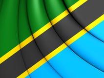 flagga tanzania royaltyfri illustrationer