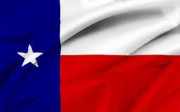 flagga texas Fotografering för Bildbyråer