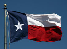 flagga texas Royaltyfri Foto