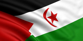 flagga västra sahara Royaltyfria Foton