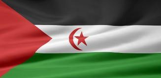 flagga västra sahara Arkivbild