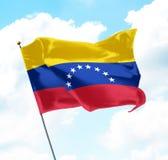 flagga venezuela Royaltyfri Bild