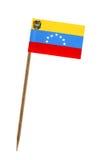 flagga venezuela Arkivbild