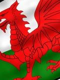 flagga wales Royaltyfri Bild