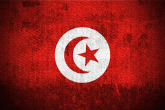 flaggagrunge tunisia vektor illustrationer