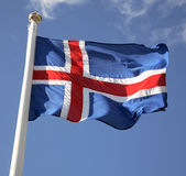 flaggaicelandic Royaltyfri Foto