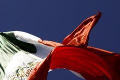 flaggamexikan Royaltyfri Fotografi