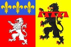 Flaggan av Rhone är en avdelning i central östlig region av Auvergne-Rhone-Alpes av Frankrike royaltyfri illustrationer