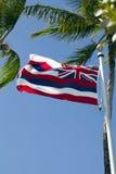 flaggan hawaii gömma i handflatan poltillståndstrees Fotografering för Bildbyråer