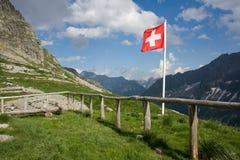 flaggaschweizare Royaltyfria Bilder