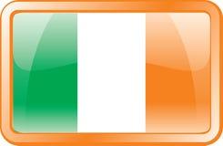 flaggasymbol ireland stock illustrationer