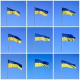 flaggaukrainare Royaltyfria Bilder