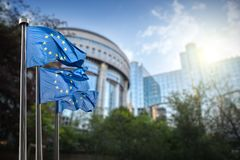 Flagge der Europäischen Gemeinschaft gegen das Parlament in Brüssel stockfotografie