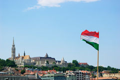 Flagge der Republik von Ungarn Stockfotografie