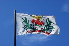 Flagge der Stadt des Nizza Fliegens Lizenzfreie Stockfotografie