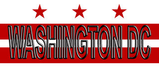 Flagge des Washington DC-Wortes Lizenzfreies Stockbild