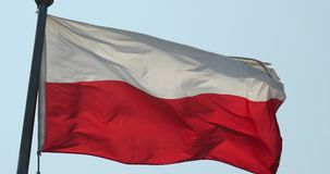 Flagge 4k Polen flattert im Wind stock video