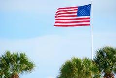 Flagge- und Palmen Stockbild