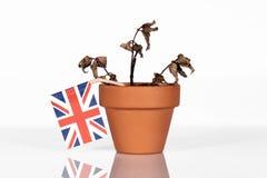 Flagge von Großbritannien oder von Großbritannien in einem Blumentopf mit Dürre flo Lizenzfreies Stockfoto